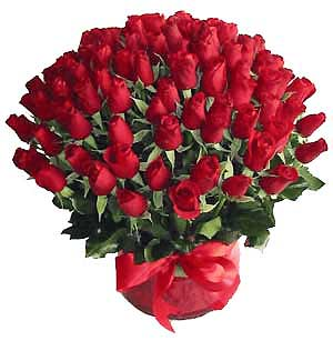 Send Feel like a rose on this valentine 100 Premium Imported Red Roses Bouquet  on Valentines Day  to Pakistan
