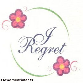Send I Regret on I am Sorry to Pakistan