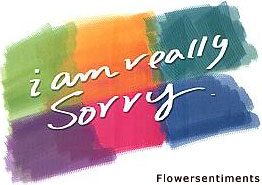 Send I am really sorry ! .... on I am Sorry to Pakistan