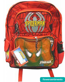 Send Spider Man School Bag on Bags to Pakistan