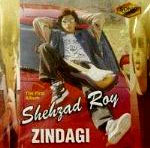 Send Zindagi - Shehzad Roy on Pakistani Pop to Pakistan