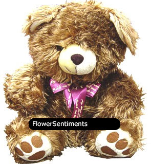 Send browny whit teddy on Stuffed Toys to Pakistan